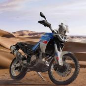 Tuareg (1)